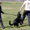 training-072