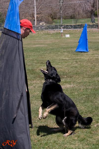 training-062