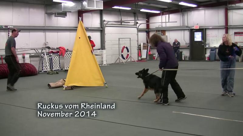 Ruckus vom Rheinland