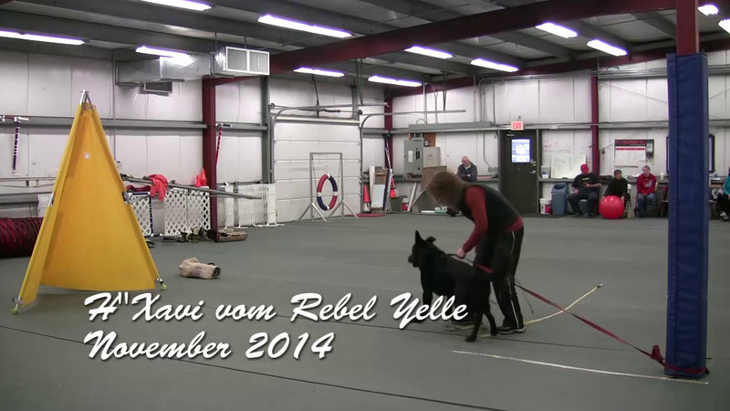 H'Xavi vom Rebel Yelle