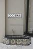 I.D. Required: Dog Bar, Palm Beach Beach, FL