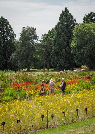 The trial gardens.
