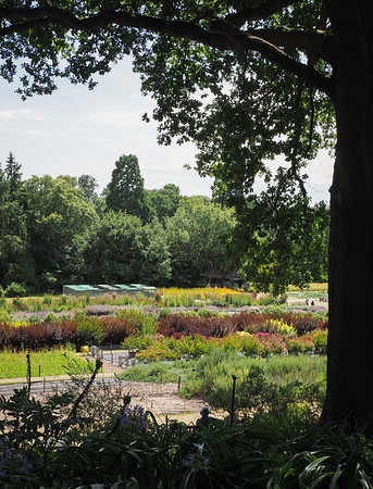 The trail gardens from the woodland area above.