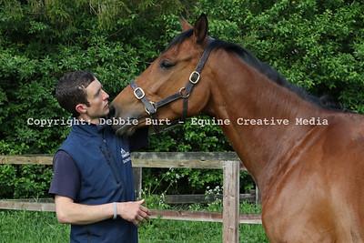 Phil Collington 2016 (Arabians)