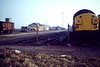 'Back end of March Diesel Depot and Old Hundred, Feb 82'. Class 37 stabled on the Old Hundred, a row of engines behind the 'A' Shed and an 08 behind the generator houses. Surprisingly, this building is the only one that remains today.