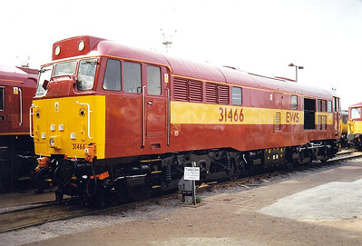 31 466 - Brush Class 31 Type 2 A1A-A1A DE - built 06/59 by Brush Traction as D5533 - 1973 to 31 115, 03/85 to 31 466 - withdrawn 02/01 from Old Oak Common - preserved - only Class 31 to receive EWS livery - seen here at Toton Open Day, 28/08/98.