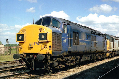 37 077 - English Electric Class 37 Type 3 Co-Co DE - built 10/62 by English Electric as D6777 - 1973 to 37 077 - withdrawn 01/00.