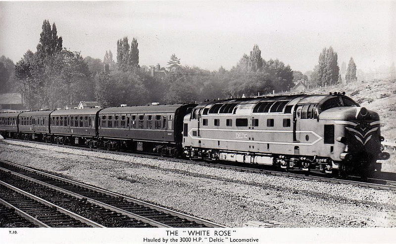 DELTIC - EE Type 5 Co-Co - built 1955 by English Electric - withdrawn 05/60 - preserved - seen here on the 'White Rose'.