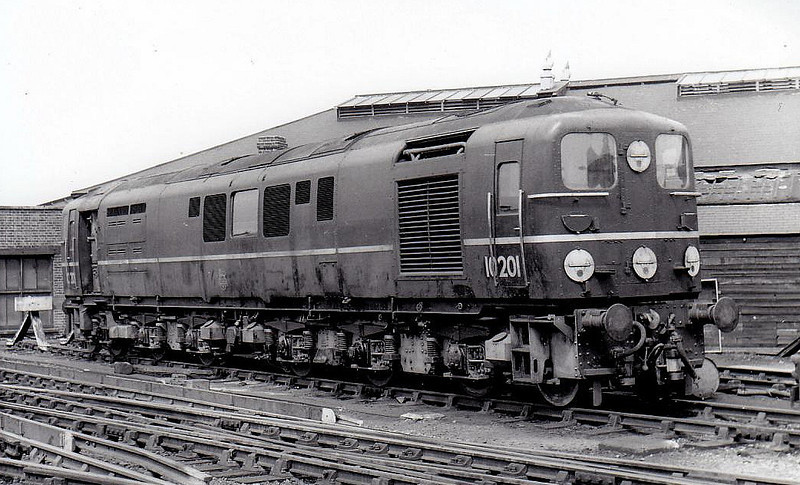 10201 - BR/English Electric 1-Co-Co-1 - buit 1950 for SR by English Electric - withdrawn 12/63 - seen here at Brighton in 1954.