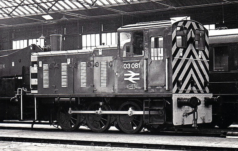 03081 - BR Class 03 0-6-0DM Shunter - built 02/60 by Doncaster Works as D2081 - 1973 to 03081 - withdrawn 12/80 from March TMD - exported to Belgium - returned and preserved.