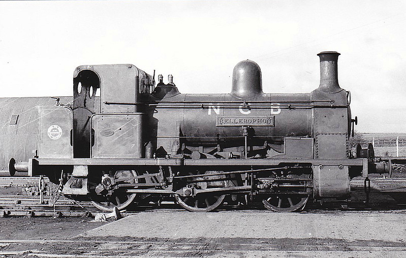 NATIONAL COAL BOARD, Haydock Colliery - BELLEROPHON - 0-6-0WT - built 1874 by Haydock Foundry for Haydock Colliery - 1947 to NCB - 1964 withdrawn, donated to KWVR - currently on loan to Foxfield Railway.