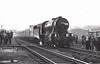 90076 - WD Class 8F 2-8-0 - built 08/44 by North British Loco Co. as WD No.7276 - 01/45 to WD No.77276, 02/47 to LNER No.3076, 07/48 to BR No.63076, 07/50 to BR No.90076 - 09/67 withdrawn from 51C West Hartlepool - seen here at Goole on October 8th, 1966, heading 1X50, the LCGB 'Crab Commemorative Rail Tour', having powered the tour from Wakefield Kirkgate.