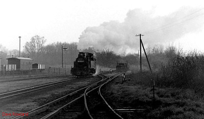99 4802 heads for the far end of Putbus yard in order to switch tracks to attach to its train. 10th April 1991.
