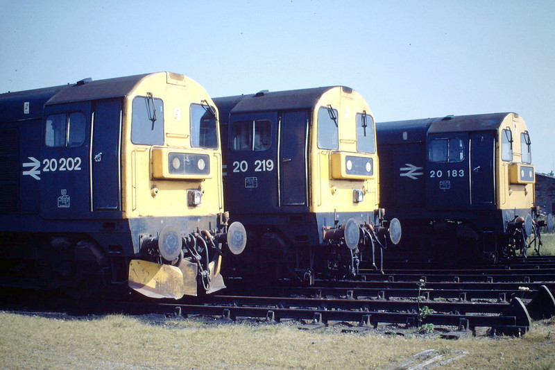 20202, 20219 and 20183 sit in Hundred Road Sidings at March Depot, 14/06/88. You might be forgiven for thinking this is Toton!