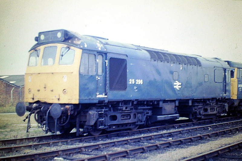25296 sits in Hundred Road Sidings on March Depot, 23/08/85. The loco only had about 3 months left in traffic for in December 1985 it was renumbered 25906 and handed over to the Engineers, who withdrew it in October 1986.
