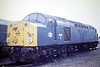 40082 parked on Hundred Road Sidings, March Depot, on 23/09/84.  40082 was built as D282 and renumbered in February 1974. It was withdrawn in November 1984 with power unit damage and scrapped at Crewe Works in January 1986.