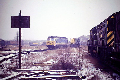50019 RAMILLIES - The Return, in the old Steam Shed yard at March Depot on its way back to London after receiving attention to its brakes at Doncaster Works, 18/01/87. 5 locos in this picture and none are operational! 50019 was built by English Electric in 1968 as D419 and renumbered to 50019 in December 1973. It was withdrawn in September 1990 and is preserved at Mid Norfolk Railway.