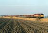 56038 heads east past Dodds Farm AHB on 6Z26 Stud Farm - Bury ballast, 18/02/03.