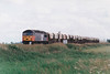 56050 BRITISH STEEL TEESIDE heads for March past Horsemoor on the Kennett - March Down Yard Redland portion, 29/06/99.