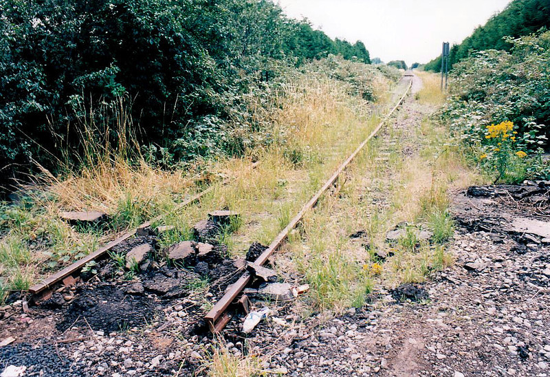 WISBECH - looking south from Weasenham Lane LC showing the track, cut when the crossing was resurfaced, 15/07/04.