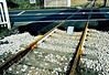 WISBECH BRANCH ( 8) -In March 2006, the track on the crossing was inexplicably relaid, no doubt at great expense, for the use of the non-existent trains. The branch had been mothballed for about 5 years by this time. New concrete sleepers too!