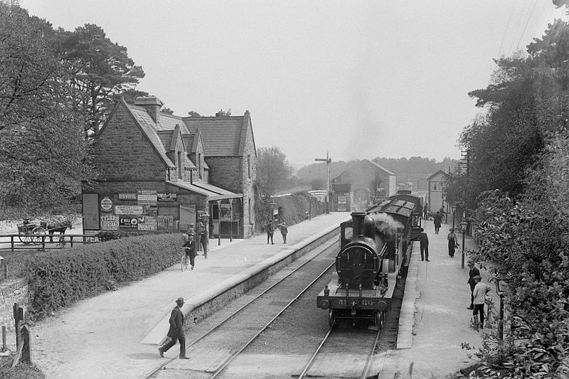 Class D14 - 60 - GS&WR Class 60 4-4-0, built 1891 by Inchicore Works - 1925 to GSR, 1934 rebuilt with Belpaire bolier, 1945 to CIE - withdrawn 1957 - seen here in original condition at Abbeyleix in County Laois in 1910.