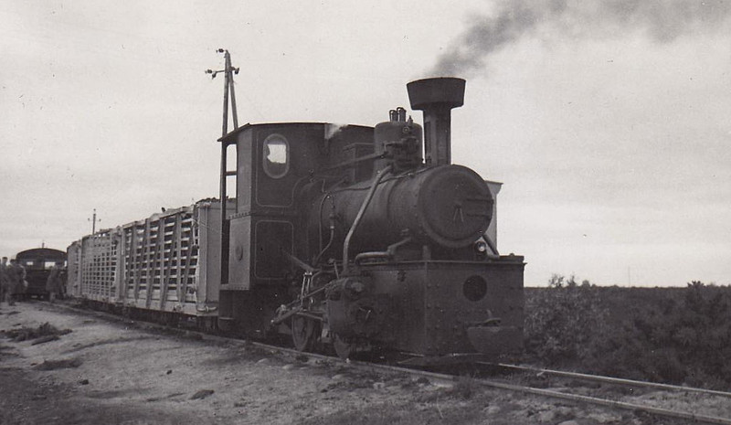 BORD NA MONA - one of a class of three 0-4-0WT's built by Andrew Barlcay in 1949 to 3ft gauge.