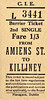 CORAS IOMPAIR EIREANN TICKET - DUBLIN AMIENS STREET - Second Class Single to Killiney - fare 1s 3d. These have the appearance of tickets bought from a machine. None are dated, although all predate 1966. All are for destinations on what is now the DART System.
