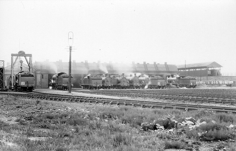 ADELAIDE LOCOMOTIVE DEPOT, Belfast - the main GNR(I) steam depot seen, I think, in the early 1950's.