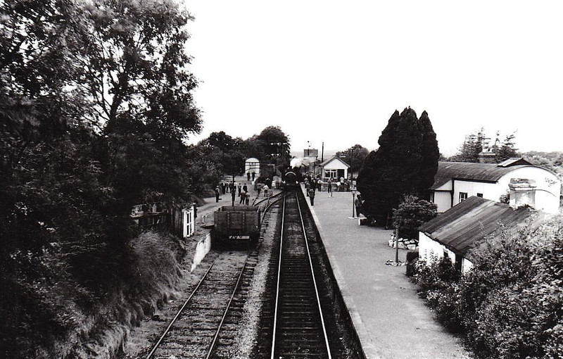 PALACE EAST JUNCTION - looking towards Bagenalstown, 05/60. A railtour stands in the station.