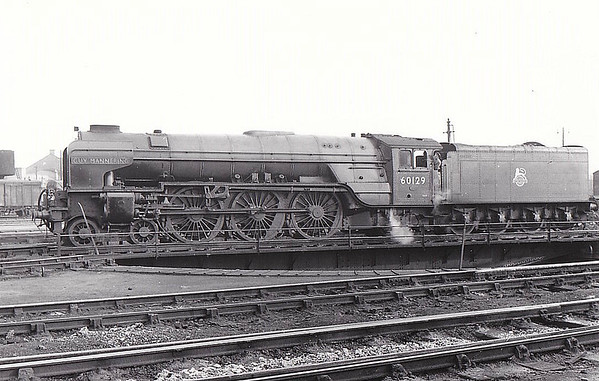 60129 GUY MANNERING - Peppercorn Class A1 4-6-2 - built 06/49 by Doncaster Works - 10/65 withdrawn from 50A York North.