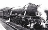 60053 SANSOVINO - Gresley LNER Class A3 4-6-2 - built 12/24 by Doncaster Works as LNER No.2552 - 11/46 to LNER No.53, 02/49 to BR No.60053 - 05/63 withdrawn from 52B Heaton - seen here at Grantham, 06/52.