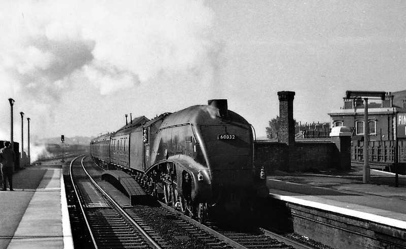60032 GANNET - Gresley LNER Class A4 4-6-2 - built 05/38 by Doncaster Works as LNER No.4900 - 11/46 to LNER No.32, 06/49 to BR No.60032 - 10/63 withdrawn from 34E New England - seen here at Finsbury Park.