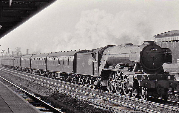 60039 SANDWICH - Gresley LNER Class A3 4-6-2 - built 09/34 by Doncaster Works as LNER No.2504 - 07/46 to LNER No.39, 07/48 to BR No.60039 - 03/63 withdrawn from 34A Kings Cross - seen here at Welwyn Garden City, 03/62.