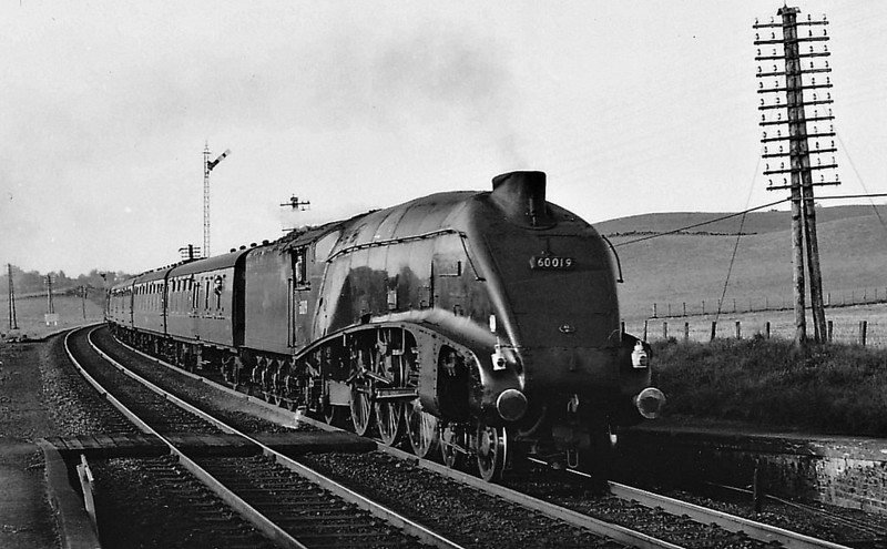 60019 BITTERN - Gresley LNER Class A4 4-6-2 - built 12/37 by Doncaster Works as LNER No.4464 - 08/46 to LNER No.19, 10/48 to BR No.60019 - 09/66 withdrawn from 61B Aberdeen Ferryhill - seen here at Gleneagles.