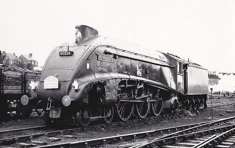 60024 KINGFISHER - Gresley LNER Class A4 4-6-2 - built 12/36 by Doncaster Works as LNER No.4483 - 05/46 to LNER No.24, 06/48 to BR No.60024 - 03/66 withdrawn from 61B Aberdeen Ferryhill - seen here at Weymouth on the A4 Preservation Society 'Victory Rail Tour', 26/03/66. 60024 provided power throughout from Waterloo - Weymouth - Yeovil - Waterloo.
