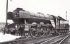 60045 LEMBERG - Gresley LNER Class A3 4-6-2 - built 07/24 by Doncaster Works as LNER No.2544 - 11/46 to LNER No.45, 06/48 to BR No.60045 - 11/64 withdrawn from 51A Darlington, where seen 06/64.