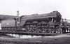 60096 PAPYRUS - Gresley LNER Class A3 4-6-2 - built 02/29 by Doncaster Works as LNER No.2550 - 11/46 to LNER No.96, 10/48 to BR No.60096 - 09/63 withdrawn from 64A St Margarets, where seen.