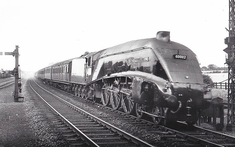 60002 SIR MURROUGH WILSON - Gresley LNER Class A4 4-6-2 - built 04/38 by Doncaster Works as LNER No.4499 - 02/39 original name POCHARD removed, 10/46 to LNER No.2, 05/48 to BR No.60002 - 15/64 withdrawn from 52A Gateshead - seen here at Dukeries Junction, 08/51.