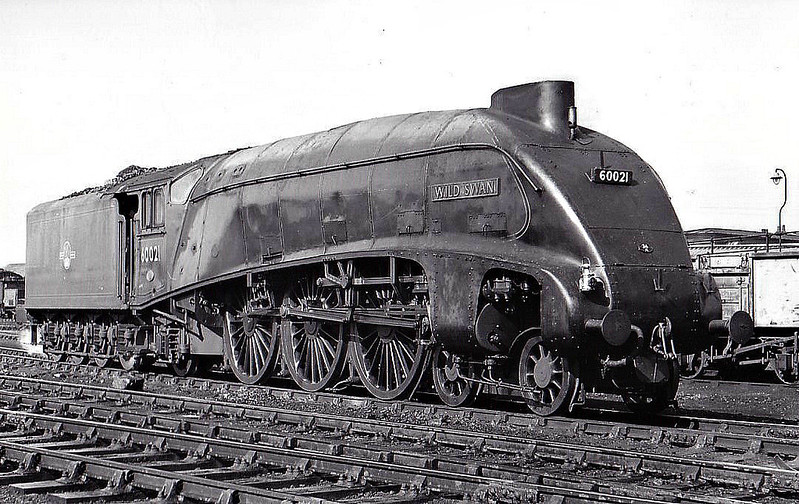 60021 WILD SWAN - Gresley LNER Class A4 4-6-2 - built 02/38 by Doncaster Works as LNER No.4467 - 05/46 to LNER No.21, 09/48 to BR No.60021 - 10/63 withdrawn from 34E New England - seen here at Grantham, 04/61.