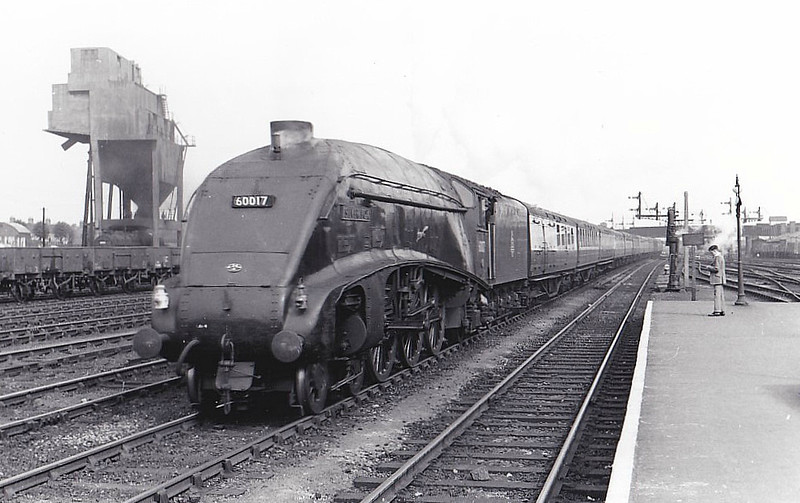60017 SILVER FOX - Gresley LNER Class A4 4-6-2 - built 12/35 by Doncaster Works as LNER No.2512 - 09/46 to LNER No.17, 04/49 to BR No.60017 - 10/63 withdrawn from 34E New England - seen here at Peterborough, 08/55.
