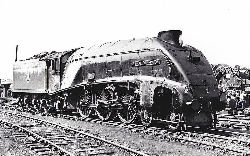 60005 SIR CHARLES NEWTON - Gresley LNER Class A4 4-6-2 - built 06/38 by Doncaster Works as LNER No.4901 - 07/42 original name CAPERCAILLIE removed, renamed CHARLES H NEWTON, 06/43 name removed, to SIR CHARLES NEWTON, 08/46 to LNER No.5, 07/48 to BR No.60005 - 03/64 withdrawn from 61B Aberdeen Ferryhill - seen here at York, 05/52.