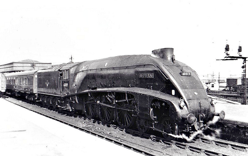 60019 BITTERN - Gresley LNER Class A4 4-6-2 - built 12/37 by Doncaster Works as LNER No.4464 - 08/46 to LNER No.19, 10/48 to BR No.60019 - 09/66 withdrawn from 61B Aberdeen Ferryhill - seen here at Aberdeen, 04/65.