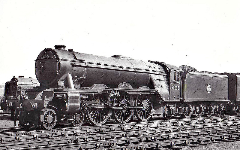 60038 FIRDAUSSI -  Gresley LNER Class A3 4-6-2 - built 08/34 by Doncaster Works as LNER No.2503 - 10/46 to LNER No.38, 06/48 to BR No.60038 - 11/63 withdrawn from 55H Leeds Neville Hill.