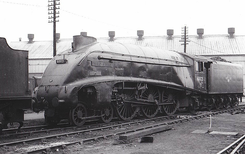 60021 WILD SWAN - Gresley LNER Class A4 4-6-2 - built 02/38 by Doncaster Works as LNER No.4467 - 05/46 to LNER No.21, 09/48 to BR No.60021 - 10/63 withdrawn from 34E New England - seen here at Doncaster Works.