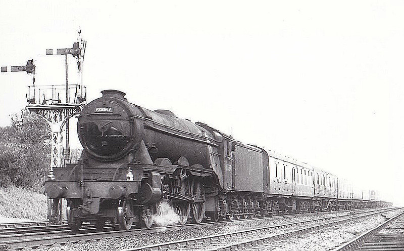 60067 LADAS - Gresley LNER Class A3 4-6-2 - built 08/24 by North British Loco Co. as LNER No.2566 - 10/46 to LNER No.67, 07/48 to BR No.60067 - 12/62 withdrawn from 34A Kings Cross - seen here at Knebworth, 09/60.