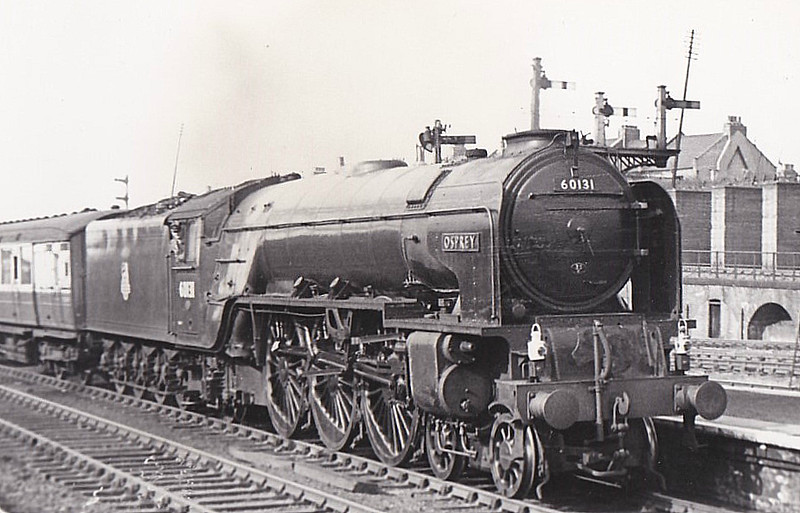 60131 OSPREY - Peppercorn Class A1 4-6-2 - built 10/48 by Doncaster Works - 10/65 withdrawn from 55C Leeds Neville Hill - seen here at Harringay in 1953.