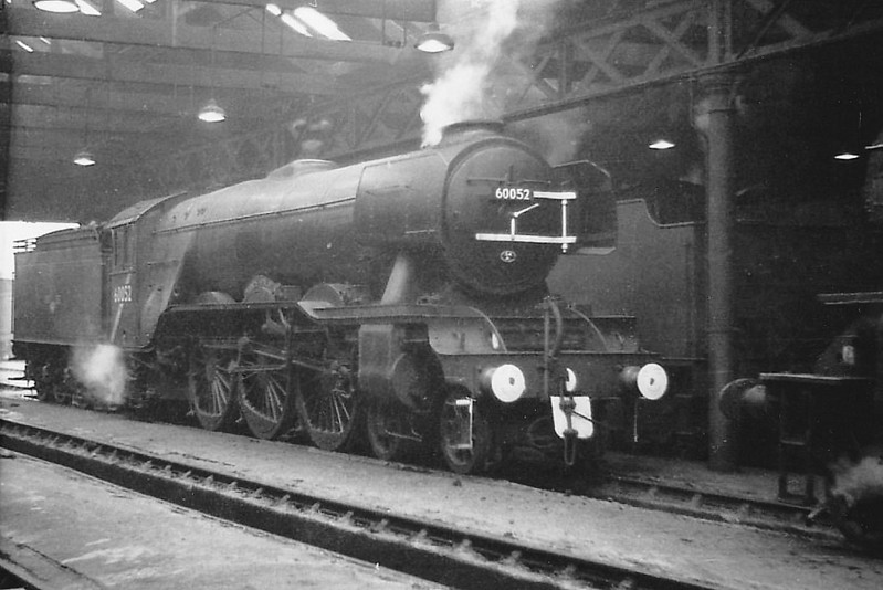 60052 PRINCE PALATINE - Gresley LNER Class A3 4-6-2 - built 11/24 by Doncaster Works as LNER No.2551 - 04/46 to LNER No.52, 10/48 to BR No.60052 - 08/63 withdrawn from 64A St Margarets.