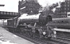 60100 SPEARMINT - Gresley LNER Class A3 4-6-2 - built 05/30 by Doncaster Works as LNER No.2796 - 07/46 to LNER No.100, 04/49 to BR No.60100 - 06/65 withdrawn from 64A St Margarets - seen here at Carlisle in 09/61.