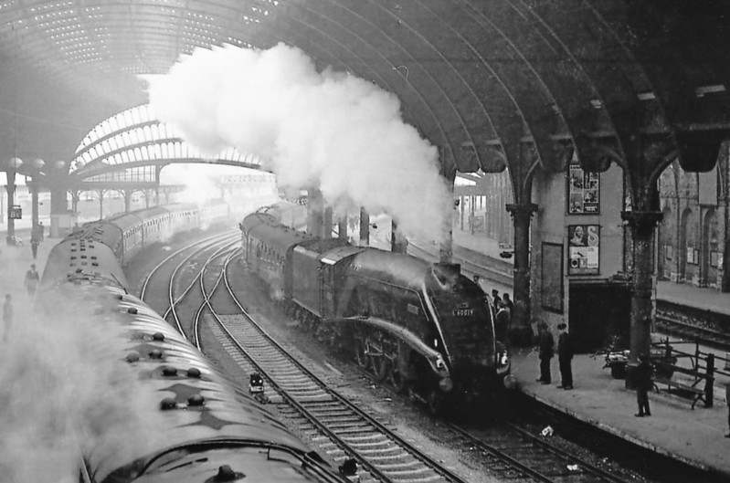 60019 BITTERN - Gresley LNER Class A4 4-6-2 - built 12/37 by Doncaster Works as LNER No.4464 - 08/46 to LNER No.19, 10/48 to BR No.60019 - 09/66 withdrawn from 61B Aberdeen Ferryhill - seen here at York.